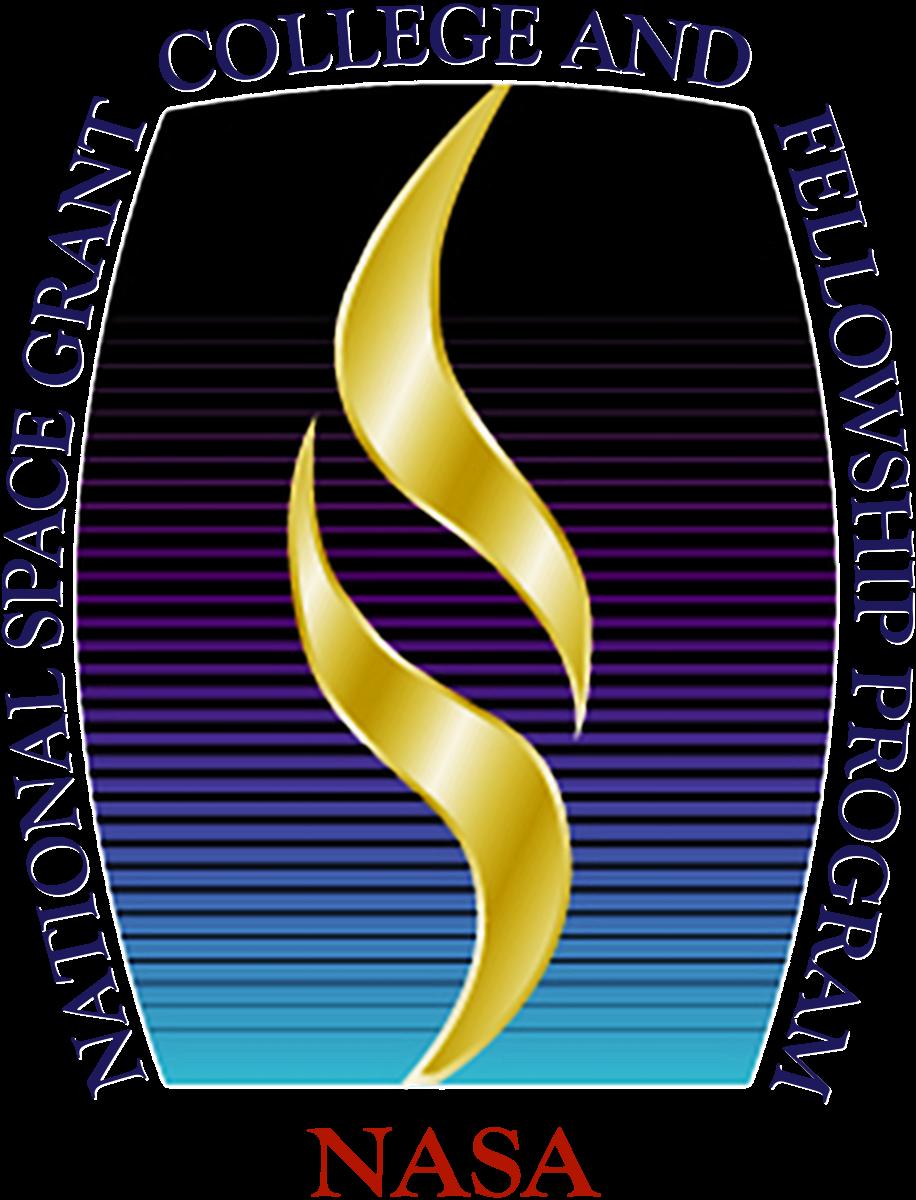 NSG Logo